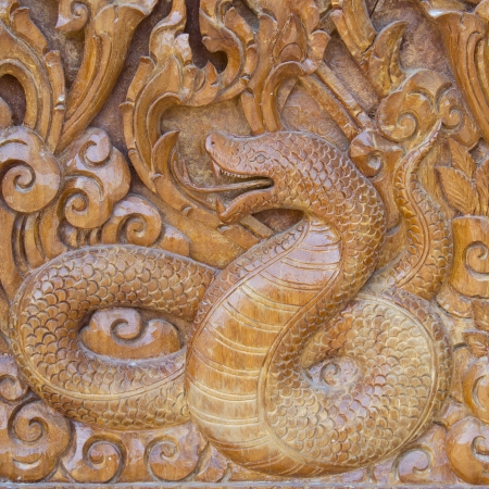 Big snake on wood photo