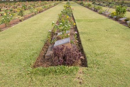 Gravestone at World War II Cemetery, Kanchanaburi, Thailand photo