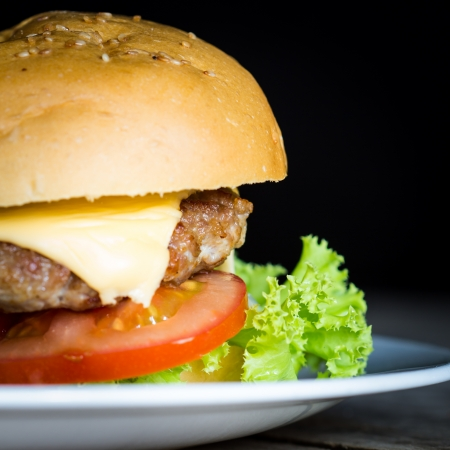 Tasty and appetizing hamburger Stock Photo - 19791685