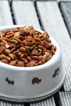 Dog food in bowl white. photo