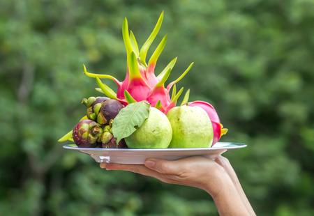 Fruit tray in hand waitress. photo