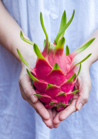 hand holding dragon fruit in the orchards Orchard photo