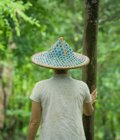 Vietnamese women standing looking a forest photo