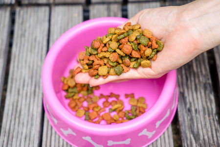 dog food in bowl and women hand Stock Photo