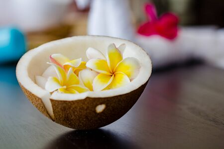 plumeria flower: Coconut with Plumeria flower on black blackground Stock Photo