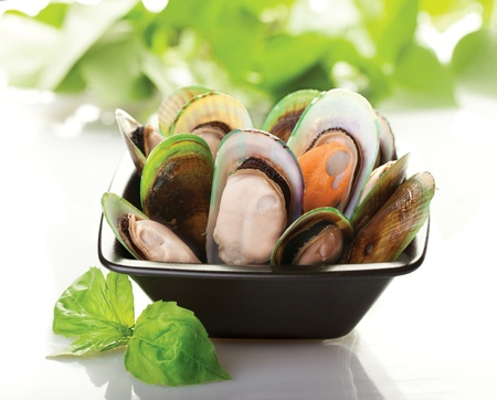 mussels: A black plate of New Zealand mussels with a white background