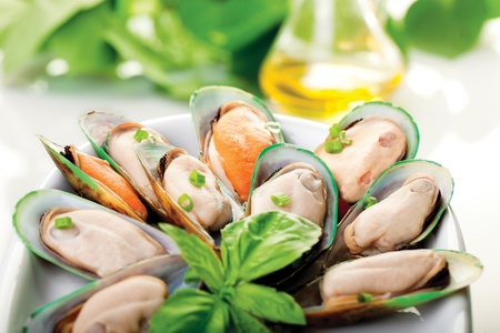 A plate of New Zealand mussels and olive oil Stockfoto
