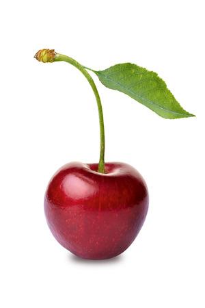 cherry: One cherry on white background Stock Photo