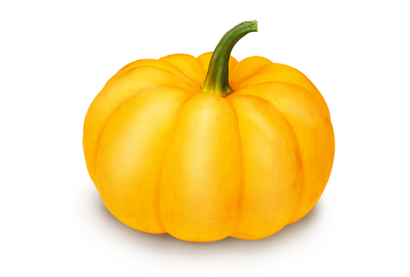 mini pumpkin isolated on a white background