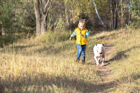Little boy and his best friend, a white English bull terrier running along a path in the woods on a sunny day
