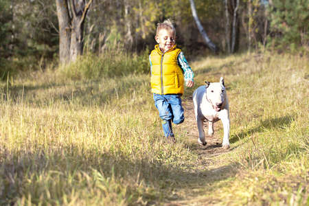 Little boy and his best friend, a white English bull terrier running along a path in the woods on a sunny day Standard-Bild - 151236938