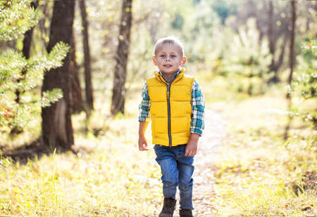 A little boy walks along a forest path and looks into the camera on a sunny autumn day. Standard-Bild