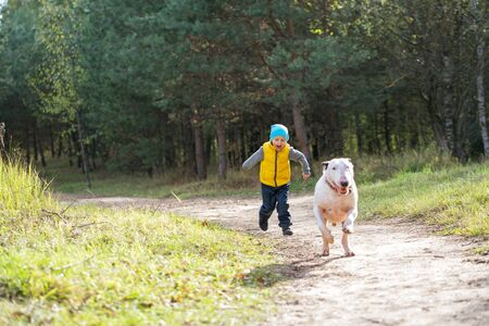 Young boy and his best friend white English bull terrier enjoying a walk in nature on a sunny summer day.