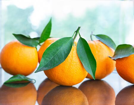A pile of fresh ripe oranges with leaves from the garden on a glass table, close-up studio shot Stockfoto