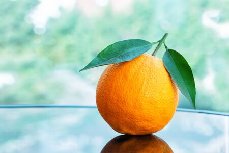 A pile of fresh ripe oranges with leaves from the garden on a glass table, close-up studio shot Standard-Bild