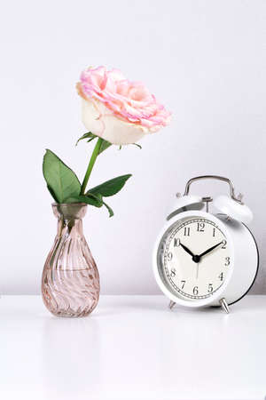 One garden rose flower in a vase and a white clock on a white table against a white wall background