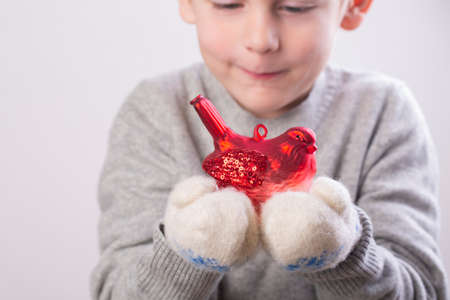 Little boy holding a red bullfinch christmas toy in his palms Standard-Bild