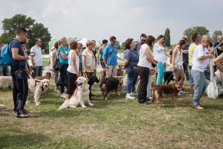 important event: MILAN, ITALY - JUNE 8: People and dogs visit Quattrozampe in fiera exhibition, important event dedicated to dogs and their owners in Milan on JUNE 8, 2013.