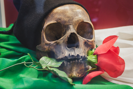 MILAN, ITALY - MAY 18: Skull with rose between its teeth on display at Militalia, exhibition dedicated to militaria collectors and military associations on MAY 18, 2014 in Milan.