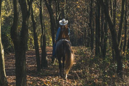horse blonde: Pretty blonde girl riding her grey horse in the countryside
