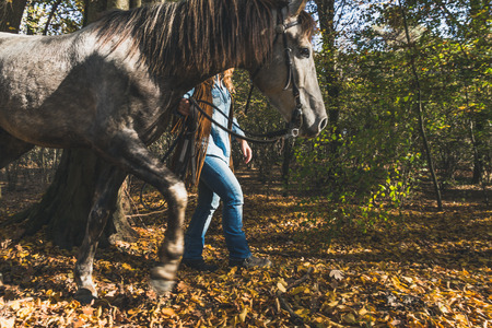 horse blonde: Detail of a pretty blonde girl standing by her grey horse in the countryside Stock Photo