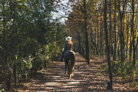Pretty blonde girl riding her grey horse in the countryside