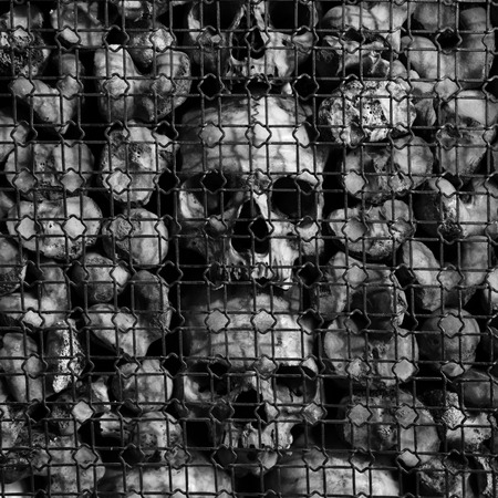 morbidity: Black and white shot of ancient human skulls and bones
