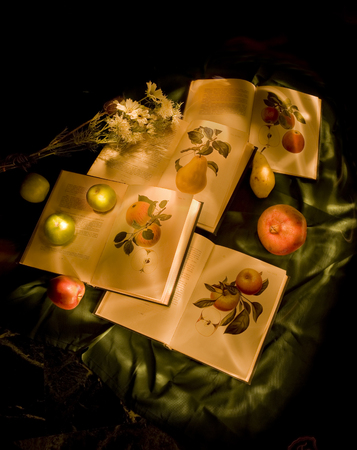 volumes: Still life with books fruits and flowers