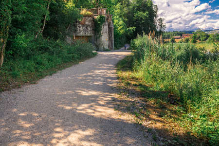 path in nature in north switzerland