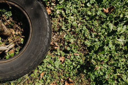 part of a tire and grass in the garden Stock Photo