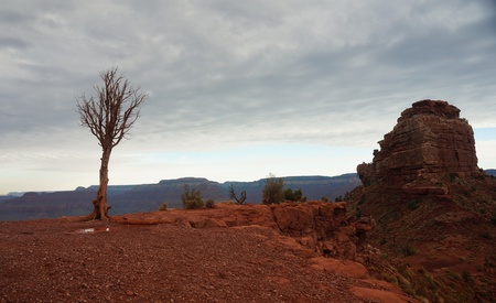 south kaibab trail: Cedar Ridge on South Kaibab Trail with Approaching Storm