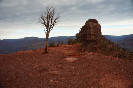 kaibab trail: Cedar Ridge on South Kaibab Trail with Approaching Storm
