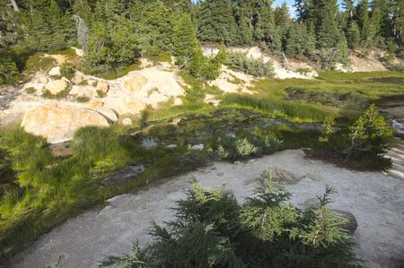 sulfur: Sulfur Stream in Bumpass Hell- Lassen Volcanic National Park
