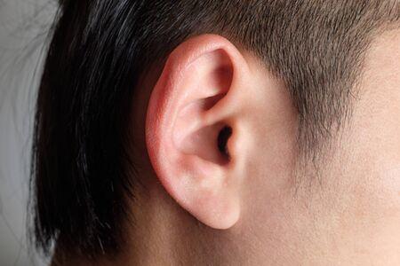 Erwachsener Mann Ohr. Ohr von der Seite gesehen. Ohrläppchen und Rad