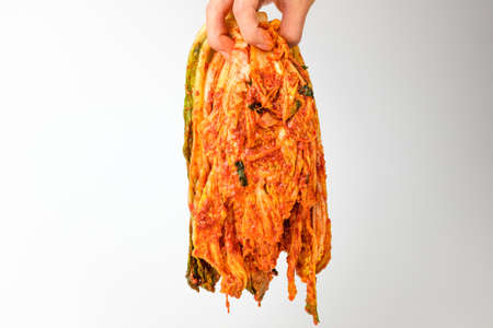 Spicy korean food. Korean traditional food. Vegetable food Banque d'images