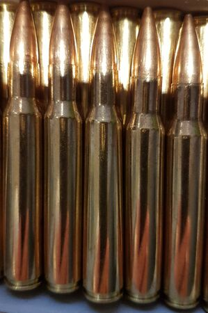 Ammunition cartridges in row and limb Фото со стока