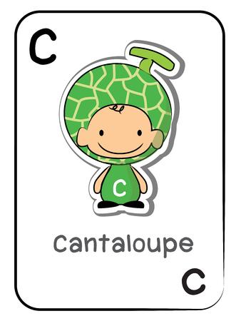 """""""C"""" für """"Cantaloupe"""" Alphabet Flashcard, Vektor-Illustration auf weißem Hintergrund. Standard-Bild - 84275388"""