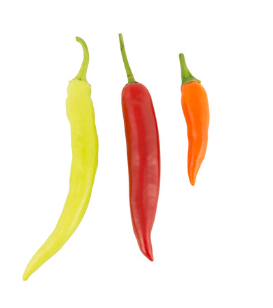 red chili pepper: chili pepper on white background Banana Pepper, Paprika, Garden Pepper, Chili Plant, Red Pepper, Spanish pepper, Sweet Pepper