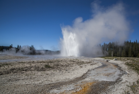 Daisy Geyser erupting in the Upper Geyser Basin of Yellowstone National Park, Wyoming