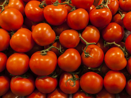 Vine tomatoes close-up at market photo