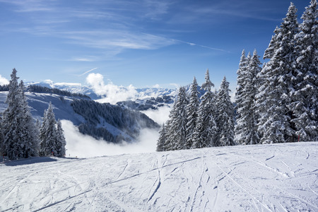 Winter landscape with snow covered trees and ski pistes, Kitzbuheler alpen, Austria