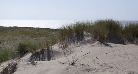 Dunes with seascape Zandvoort the Netherlands Stock Photo