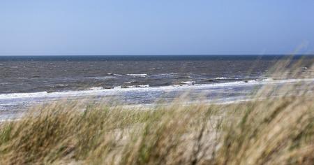 natural landscape: Dunes with seascape Zandvoort the Netherlands Stock Photo