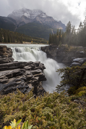 Athabasca Falls, Icefield Parkway, Jasper, Canadian Rockies Stock Photo