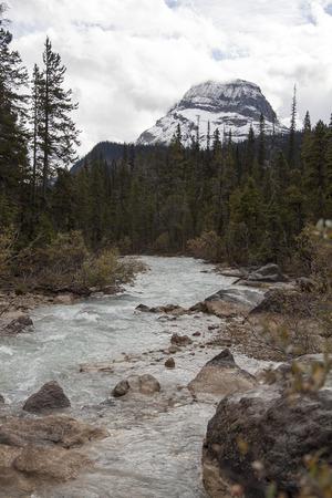 River Wapta mountain near Takakkaw Falls, Yoho National Park, British Columbia, Canada