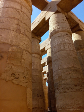 plurality: a plurality of columns on the territory of the Karnak temple