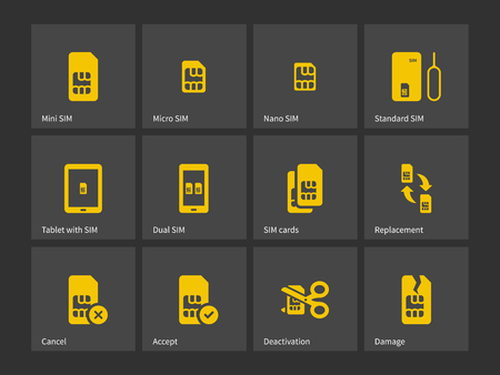 Set of SIM cards different sizes icons. Vector illustration.