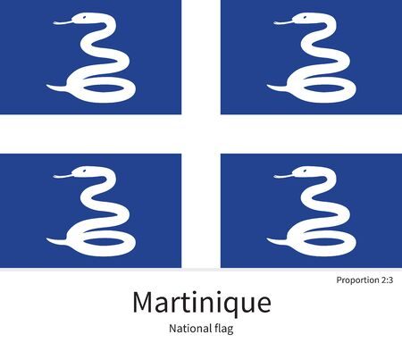 citizenship: National flag of Martinique with correct proportions, element, colors for education books and official documentation
