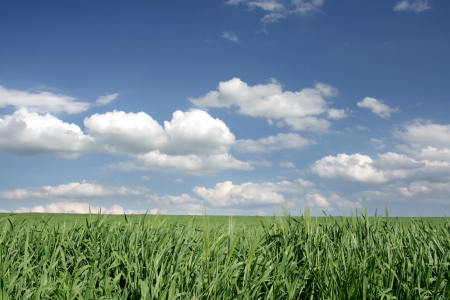 Beautiful farmlands with lovely clouds   photo