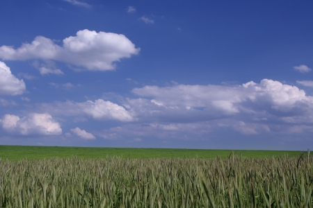 Beautiful farmlands with lovely clouds.  Stock Photo - 16649904